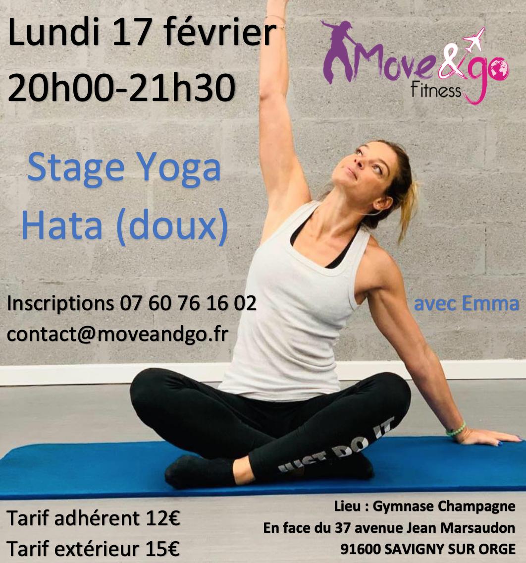 flyer Stage Yoga Hata 170220
