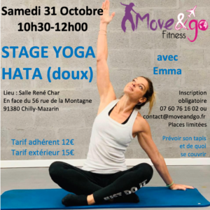 Stage Yoga Hata 311020